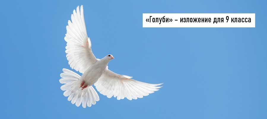 Текст изложения «Голуби» – Русский язык – 9 класс