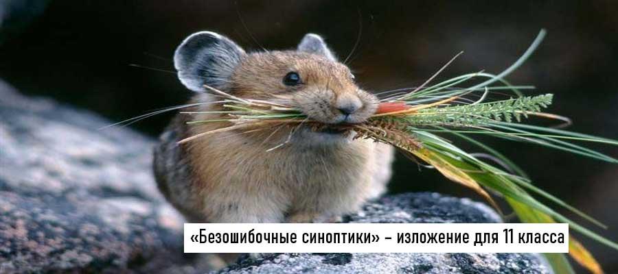 Текст изложения «Безошибочные синоптики» – Русский язык – 11 класс