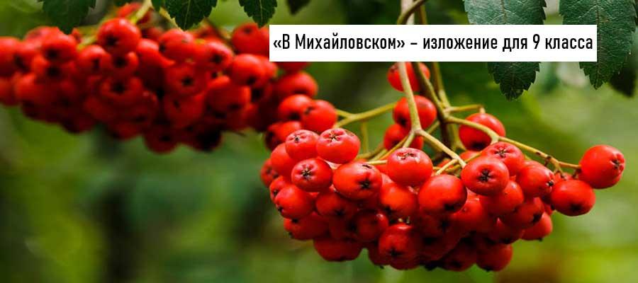 Текст изложения «Рябинка» – Русский язык – 9 класс