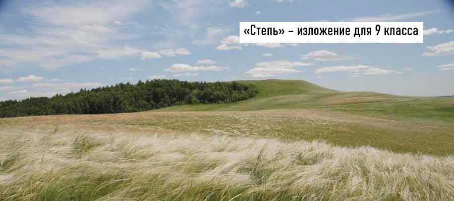 Текст изложения «Степь» – Русский язык – 9 класс