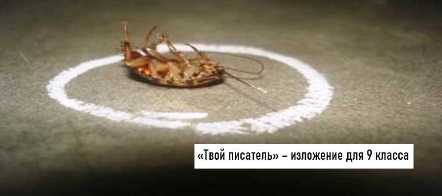 Текст изложения «Твой писатель» – Русский язык – 9 класс