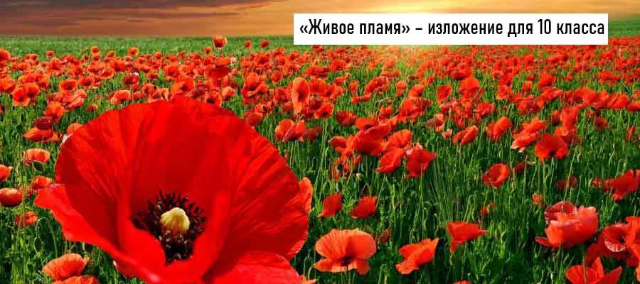 Текст изложения «Живое пламя» – Русский язык –10 класс