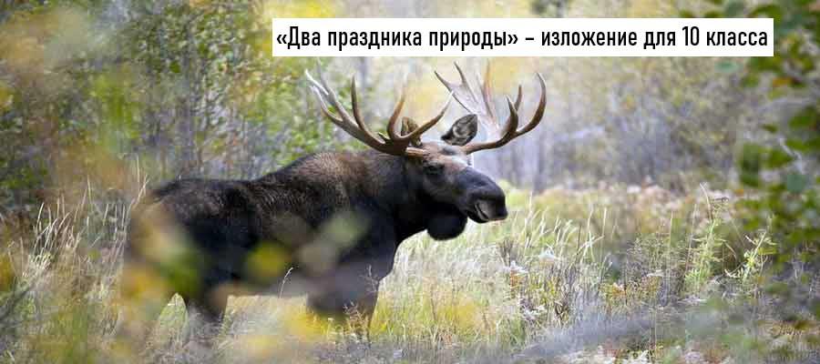 Текст изложения «Два праздника природы» – Русский язык – 10 класс